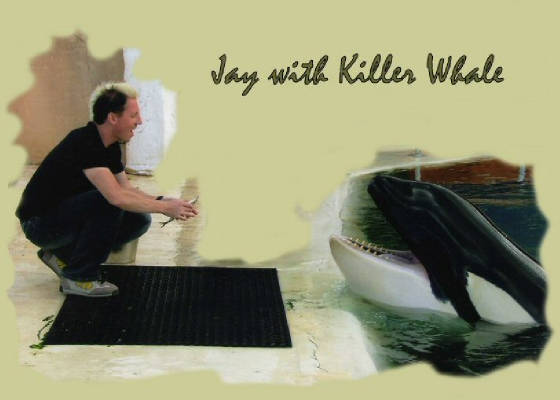 Jay with Killer Whale